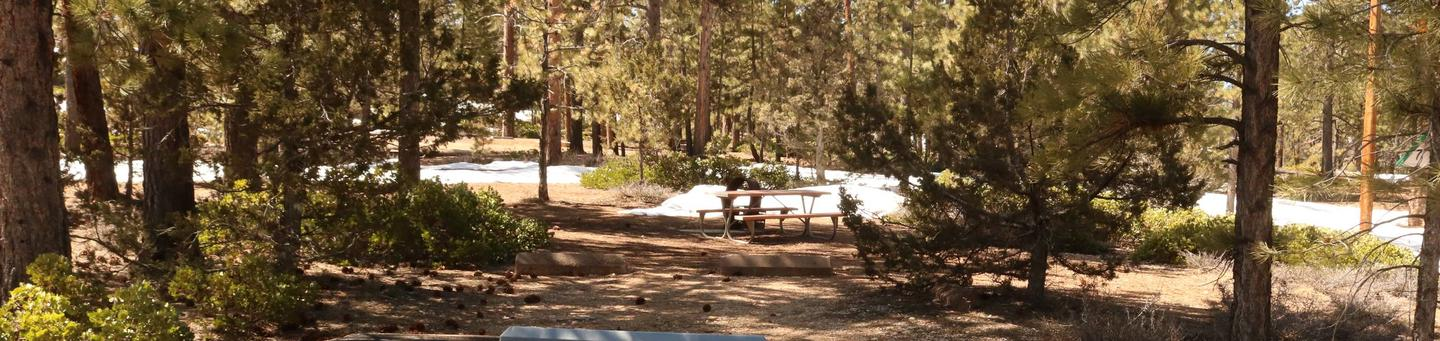 Sunset Campground Site 302site 302