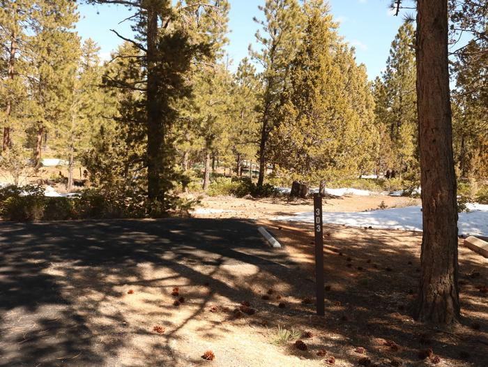 Sunset Campground Site 303site 303