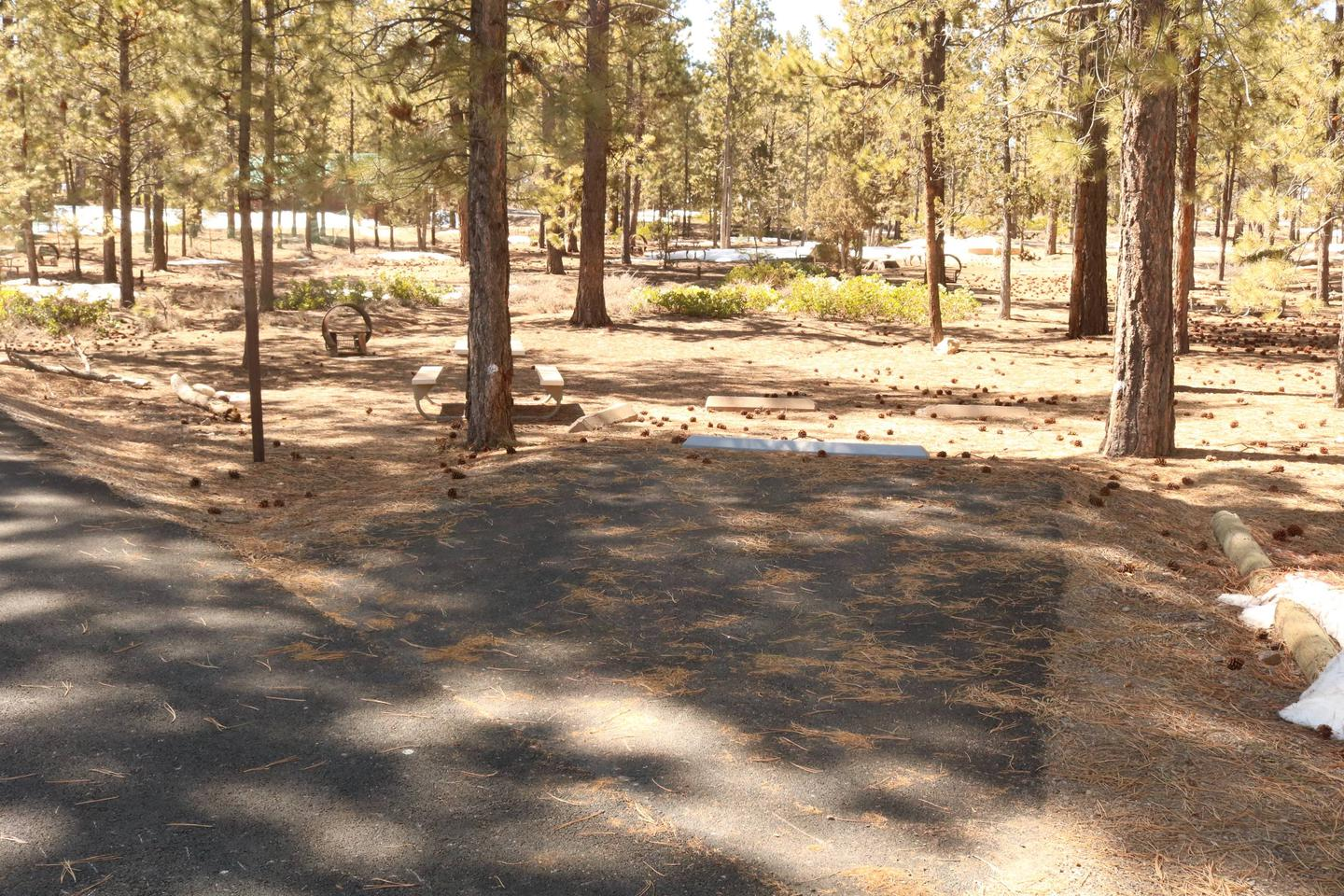 Sunset Campground Site 310site 310