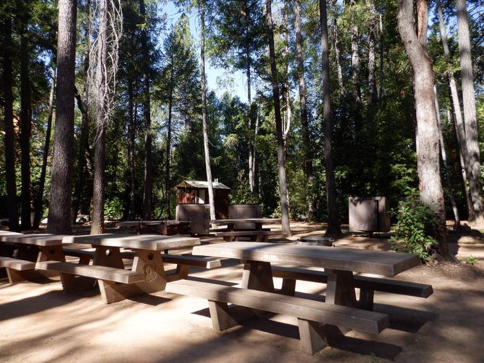Picnic Tables and Vault Toilet