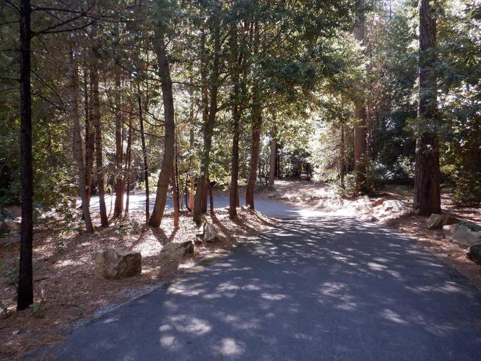 Driveway to Manzanita Campsite