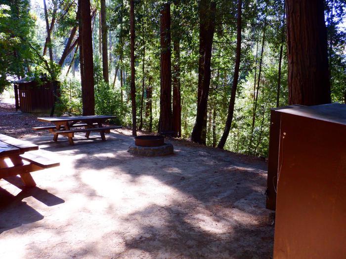 Campfire Ring