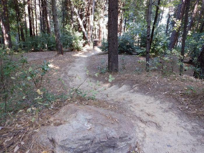 Walking Path to Campsite