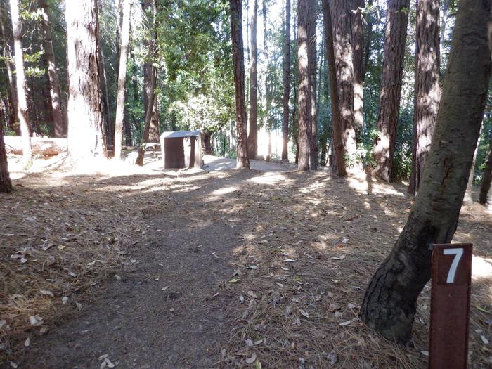 Walking Path to Campsite 7