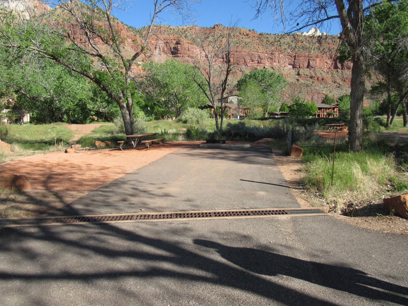 Campsite areaSite A15