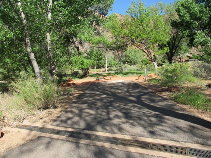 Campsite areaSite A18
