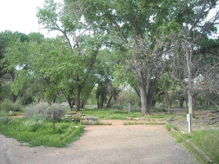 Campsite area 4B31