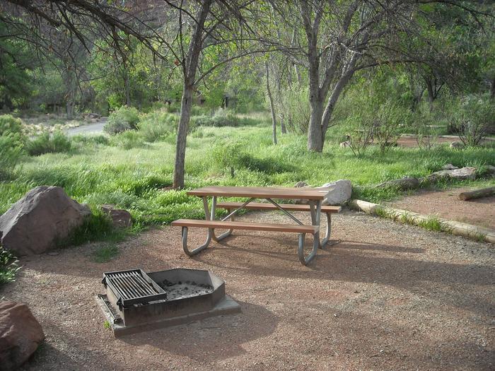 Campsite area 4B28