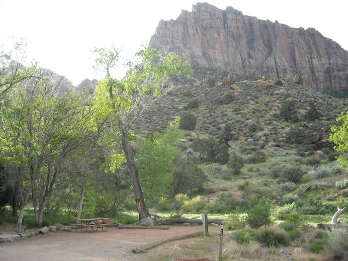 Campsite area 2B19