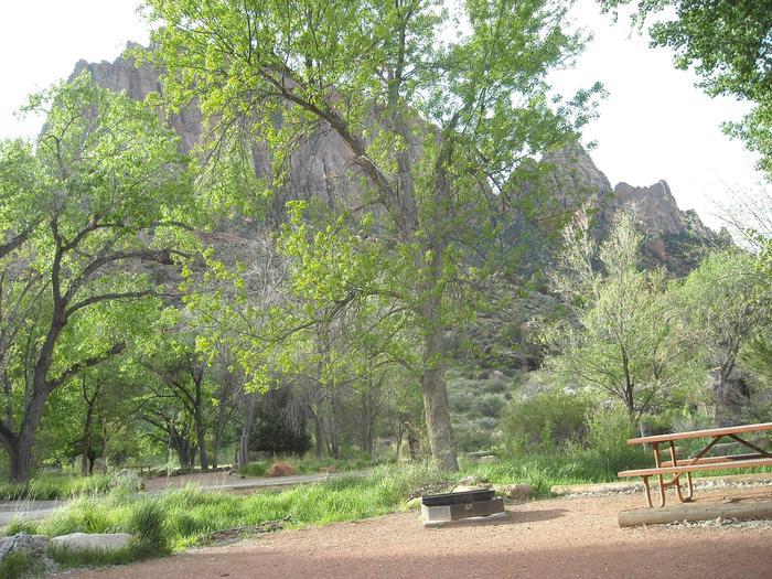 Campsite area 2B23