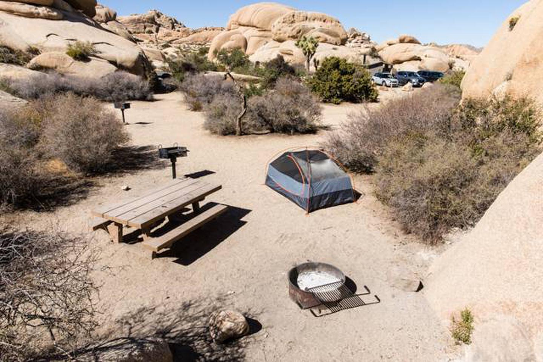 Jumbo Rocks site 6dOverview of campsite