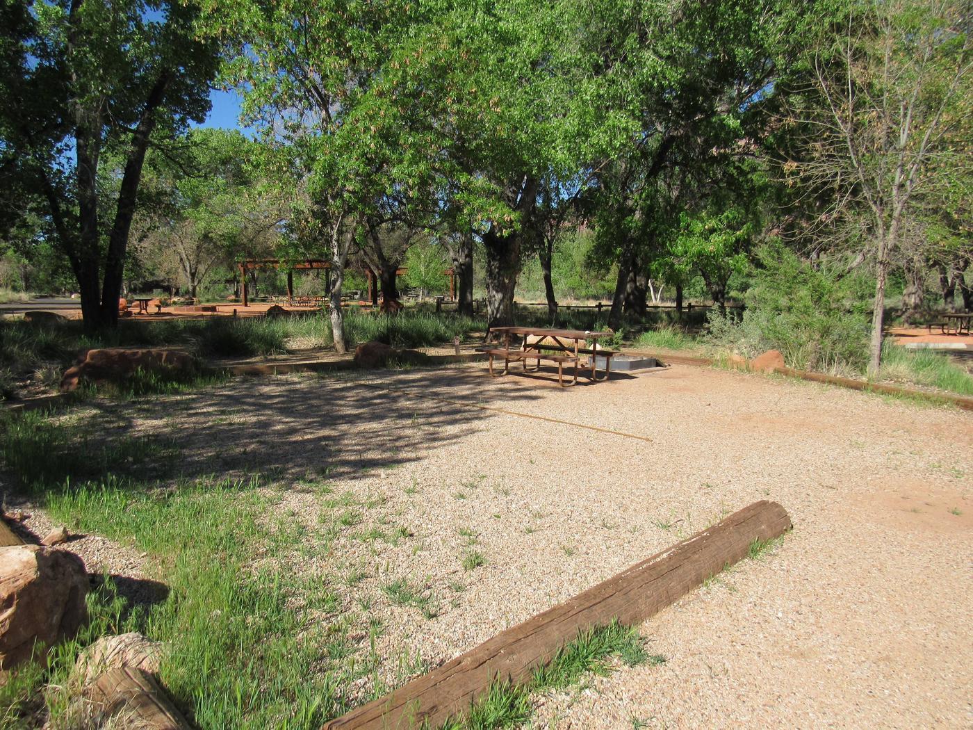 C15 campingC15 campsite