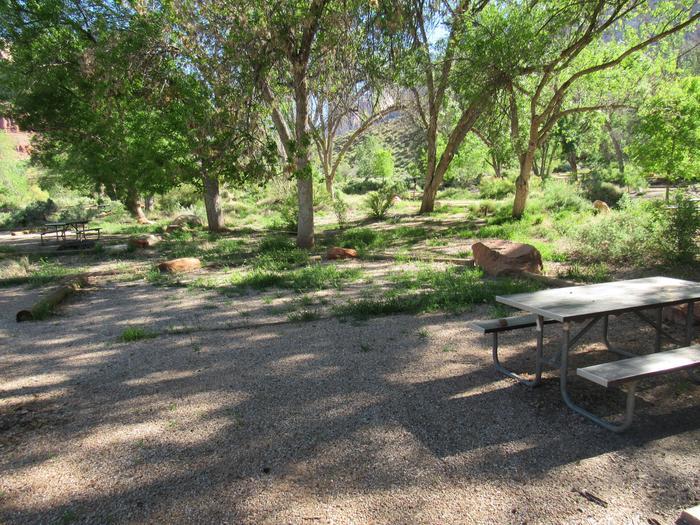 C22 tent site