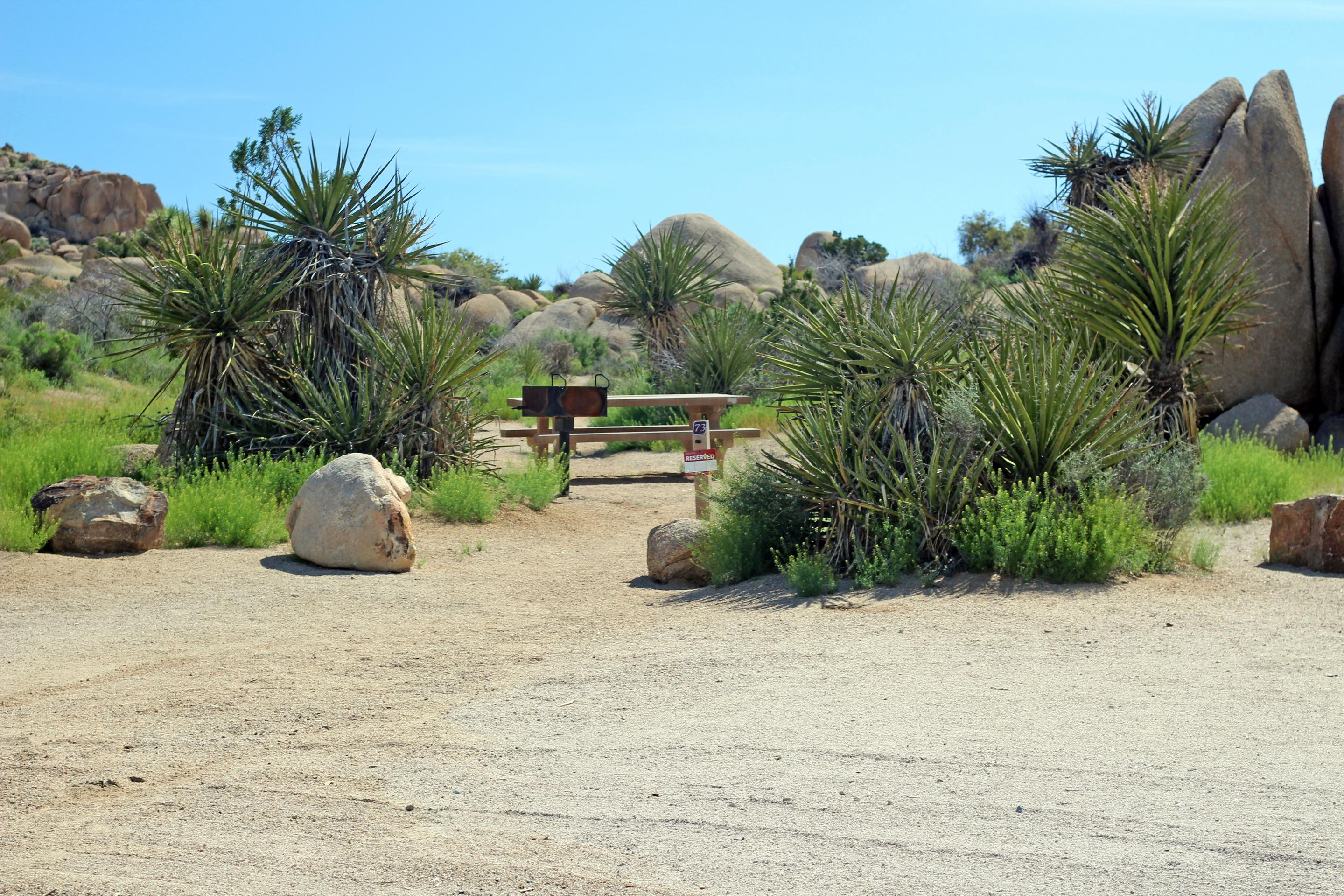 Shared parking for campsite. Picnic table surrounded by boulders and green plants.Parking and campsite.