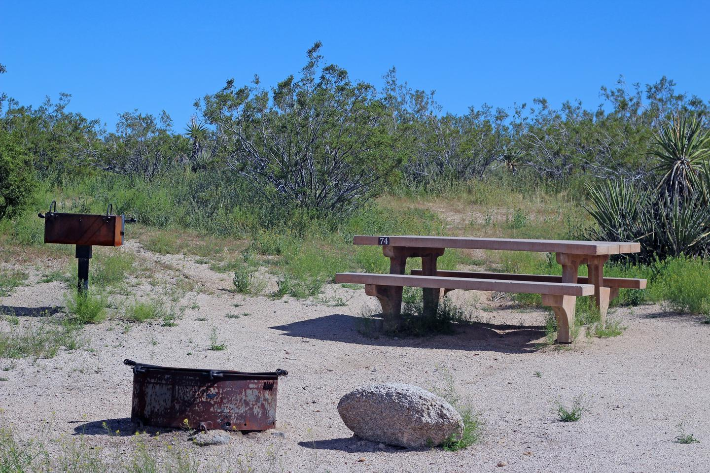 Campsite  with picnic table surrounded by flat sandy area and green plants.Campsite.
