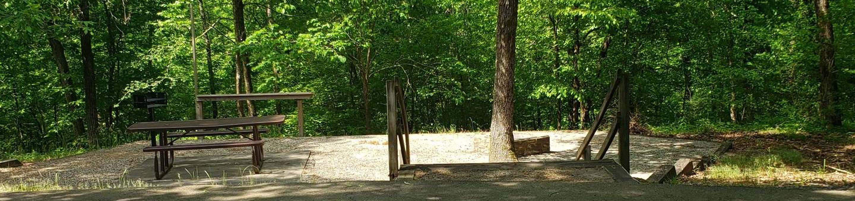 Jefferson Ridge Site 82Campsite 82