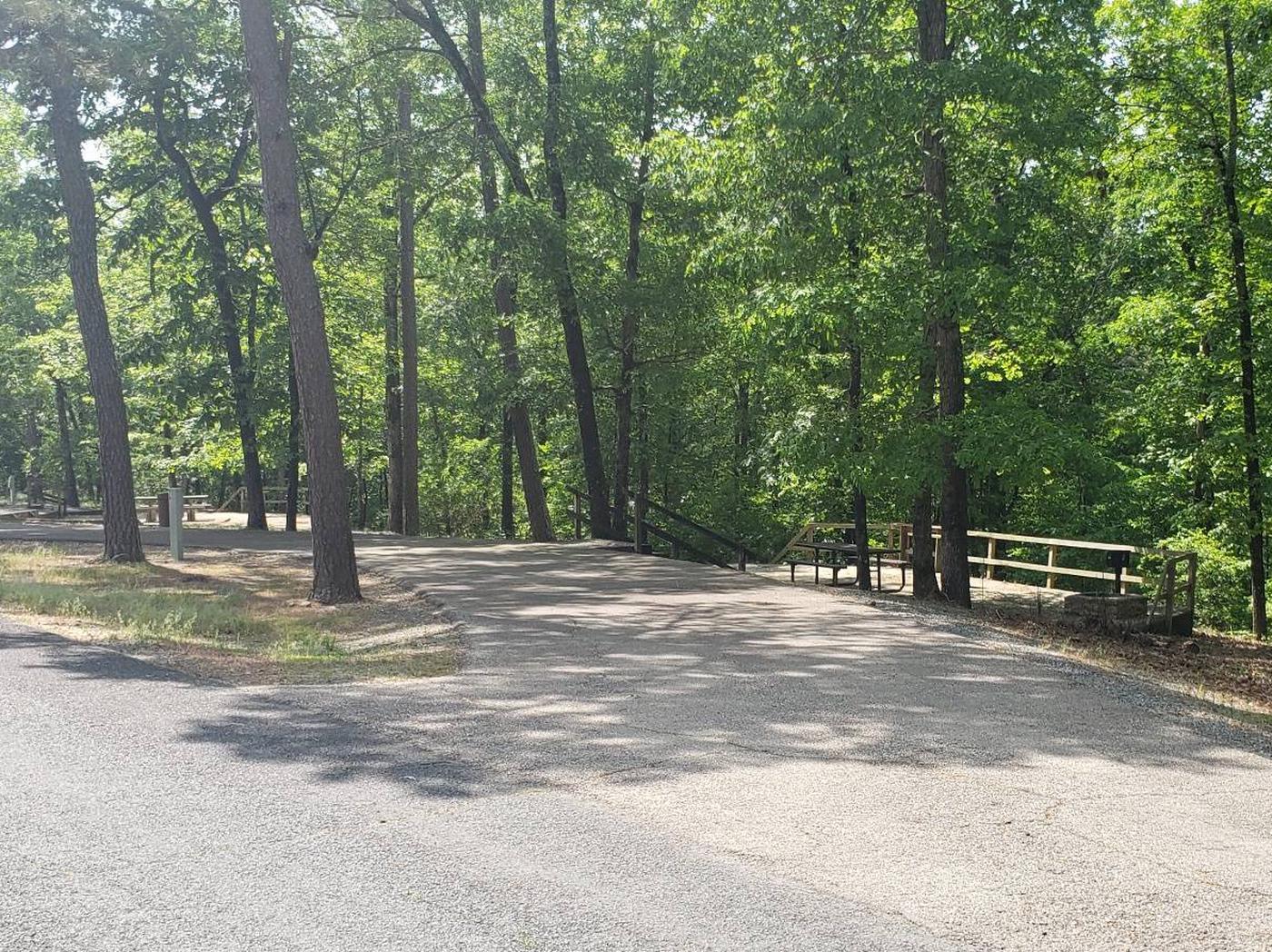 Jefferson Ridge Site 79Campsite 79
