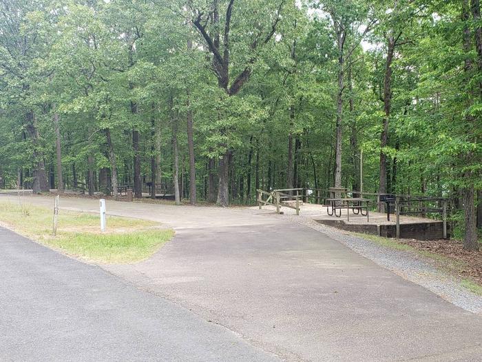 Jefferson Ridge Site 62Campsite 62