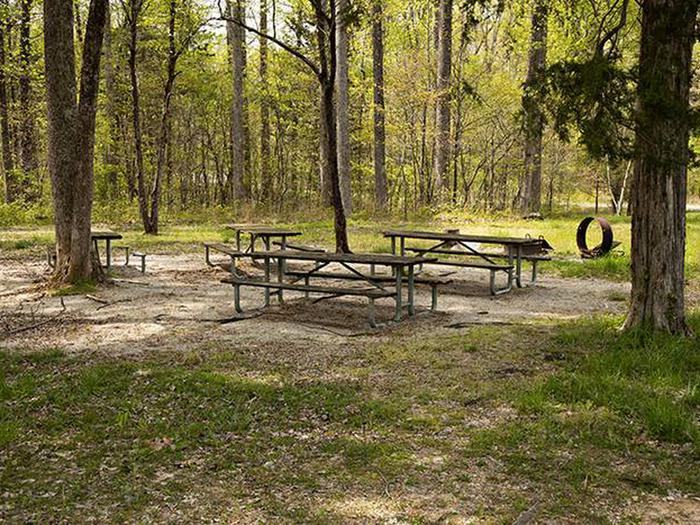 Group Campsite G-7