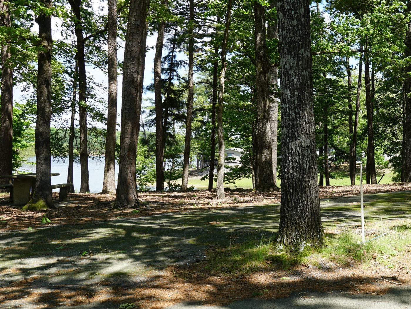 Tompkins Bend Campground, campsite # 1