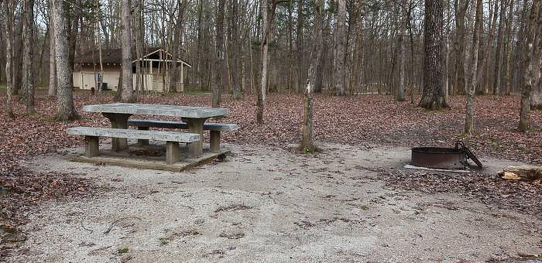 Campsite C 81Campsite C-81