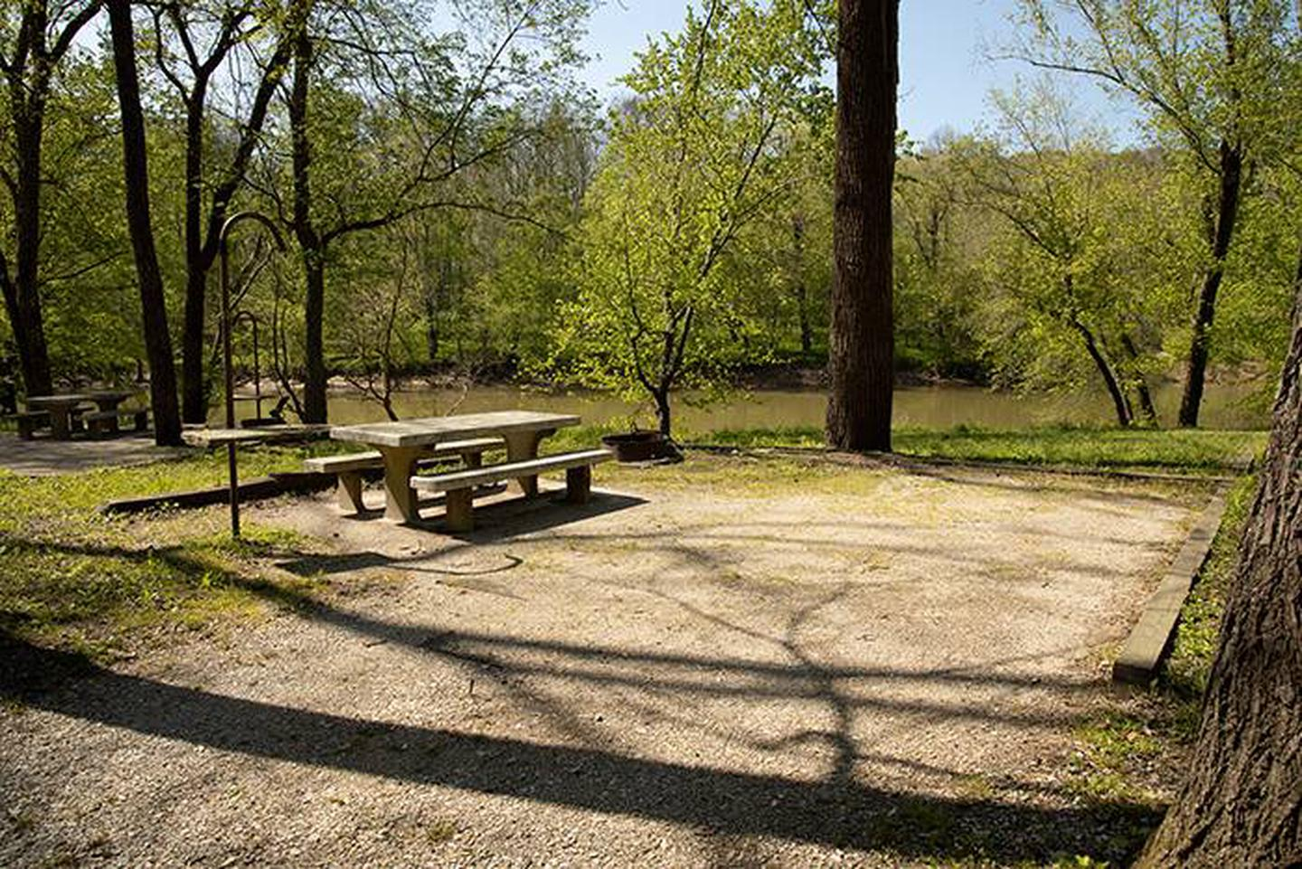 Campsite 6, has a view of the Green River, the campsite has a picnic table and fire ring.