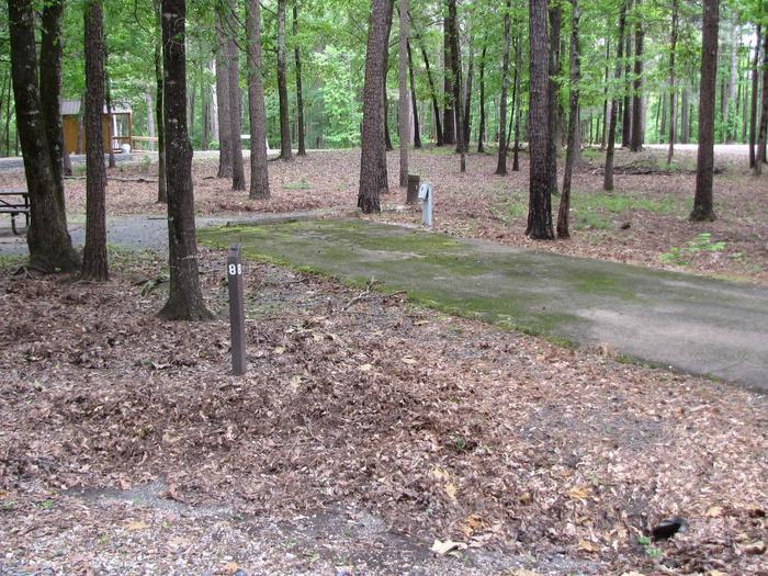 Blue Ridge Site 8