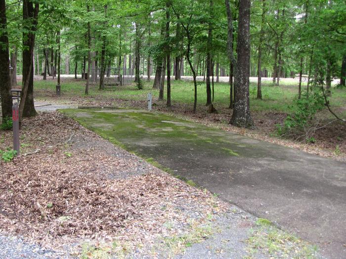 Blue Ridge Site 10
