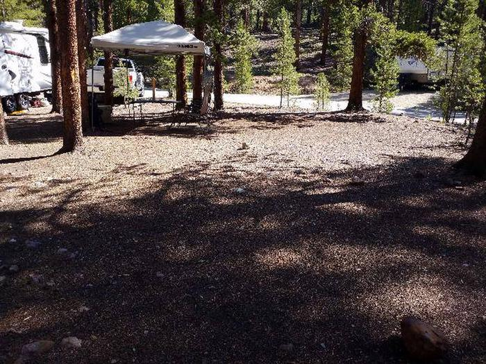 Father Dyer Campground, Site 15 clearing