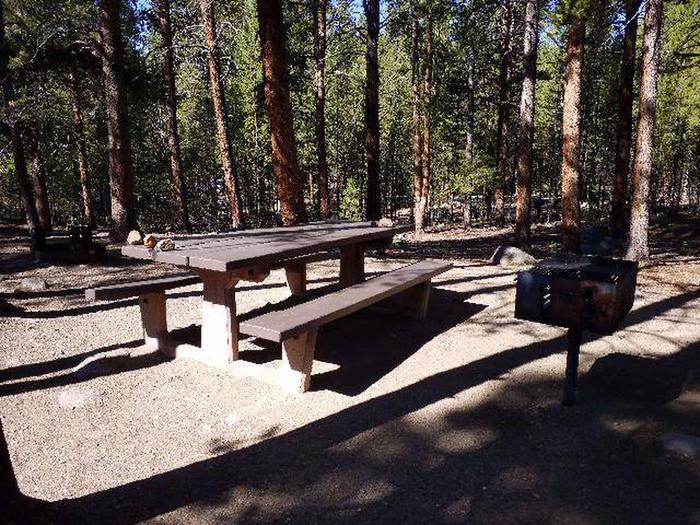 Father Dyer Campground, Site 15 picnic table and fire grill