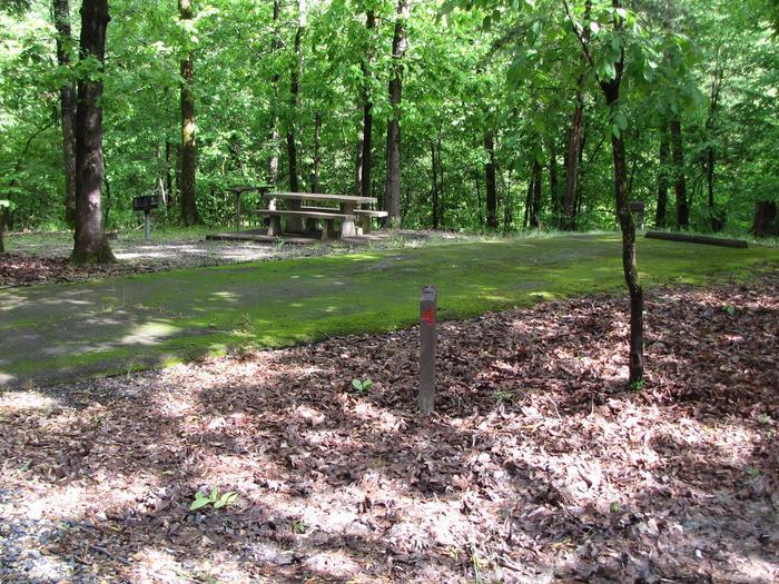 Blue Ridge Site 4