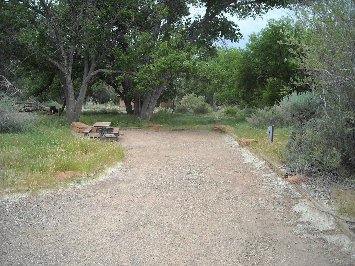 Campsite areaB35
