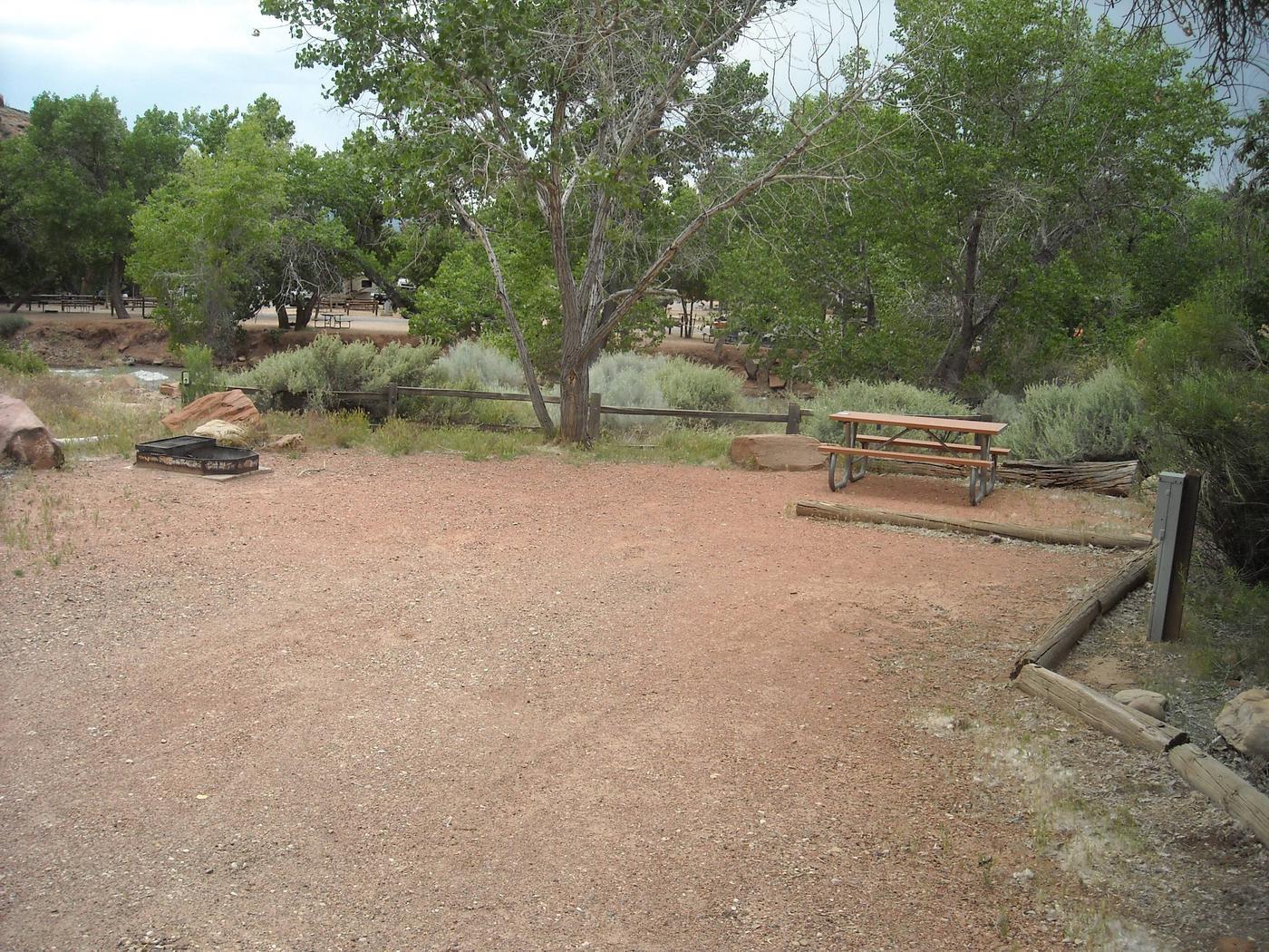 Campsite viewSite B55