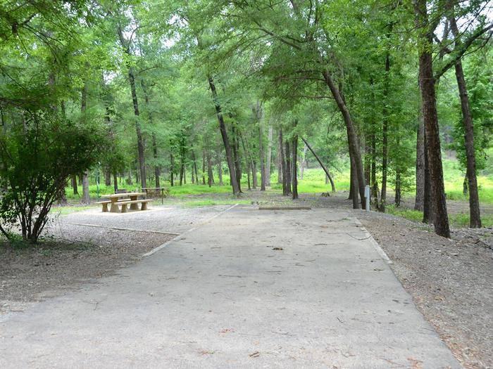 Gillham Lake, Big Coon Creek Campsite # 29Campsite #29