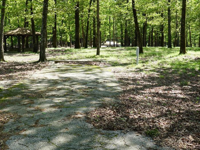 Tompkins Bend Campground, campsite # 21