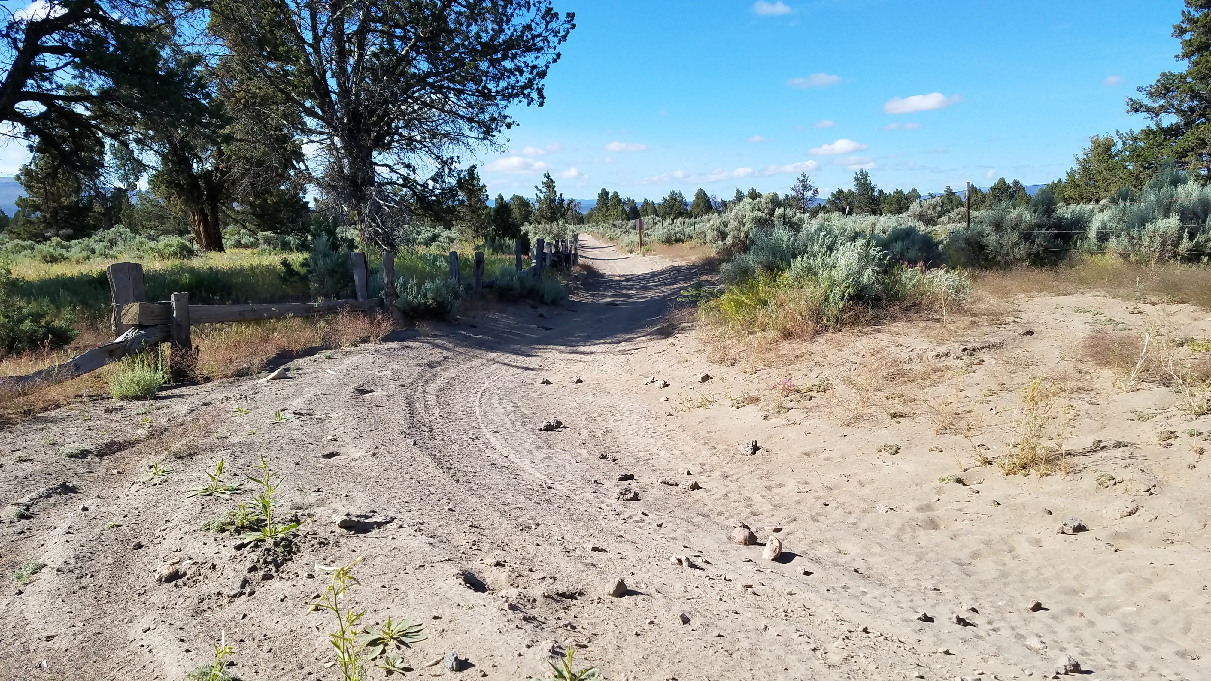 OHV Trail at Alfalfa Curves Staging Area