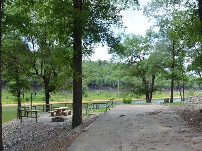 Gillham Lake, Big Coon Creek Campsite # 24Campsite #24