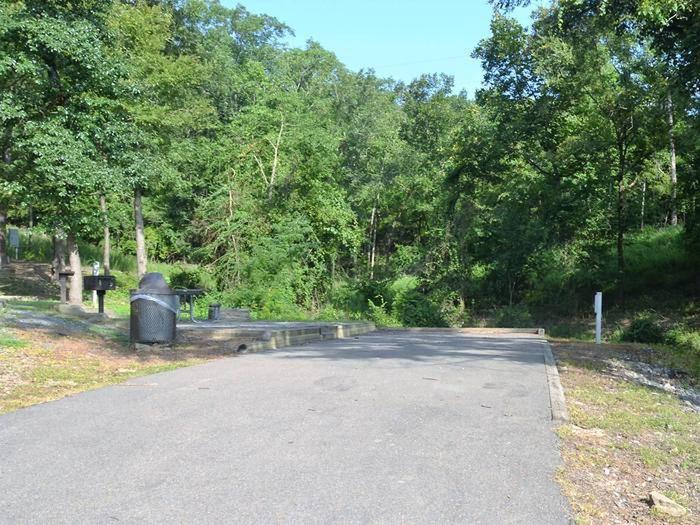 Gillham Lake, Big Coon Creek Campsite # 21Campsite #21