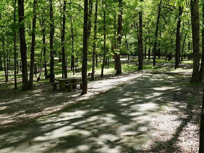 Tompkins Bend Campground, campsite # 47