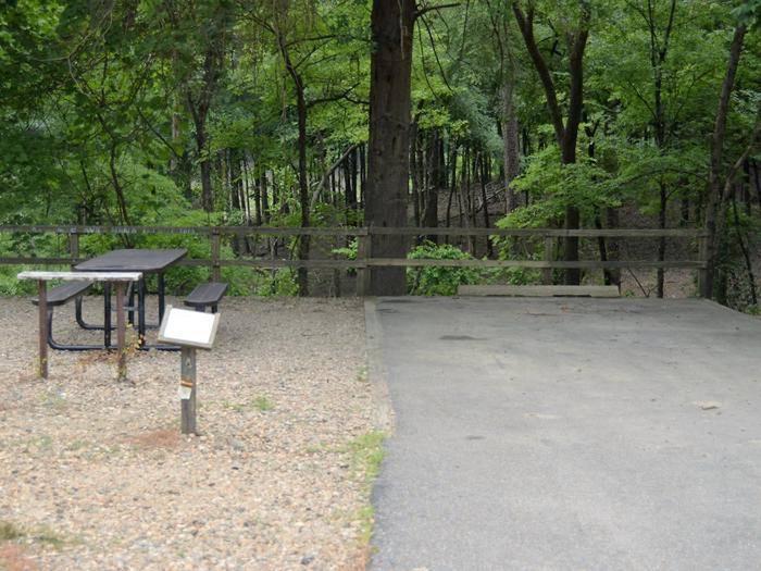 Gillham Lake, Big Coon Creek Campsite # 14Campsite #14
