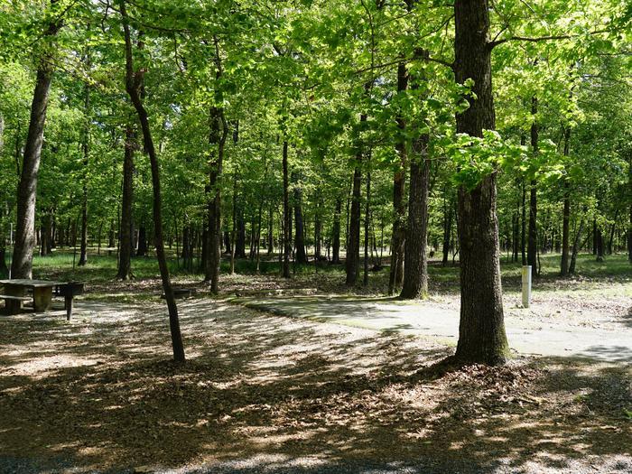 Tompkins Bend Campground, campsite # 69