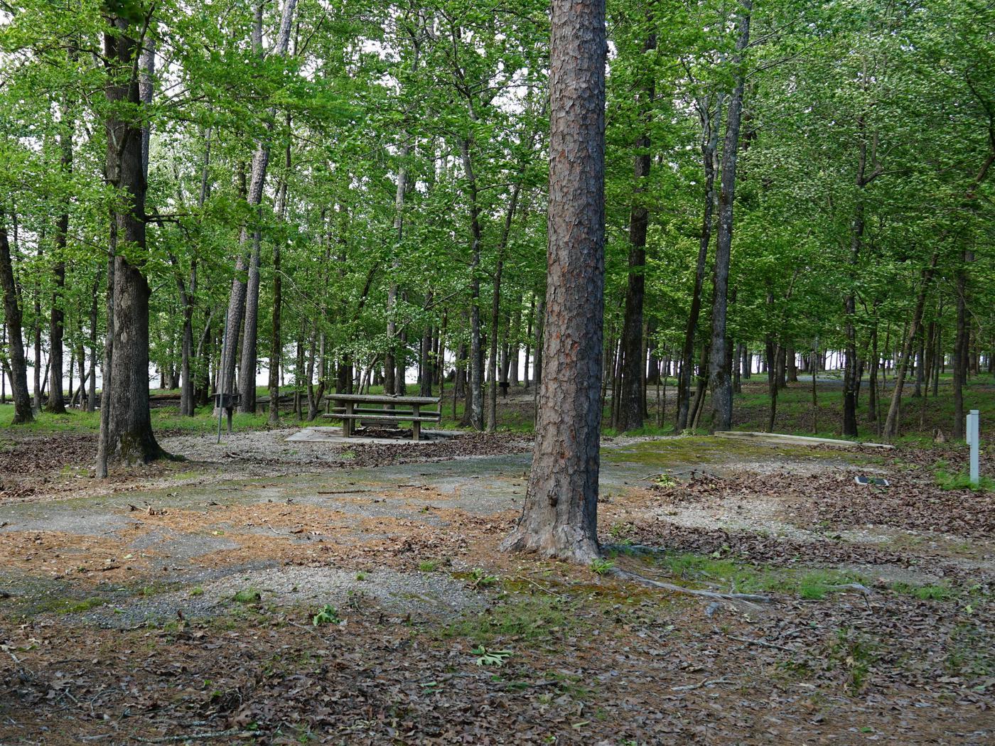 Tompkins Bend Campground, campsite # 71
