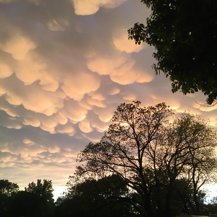 Sky after a spring storm