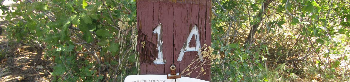 """Brown wooden sign with """"1A"""" engraved on it surrounded by vegetationSite 001 in Juniper Family Campground is one of two group campsites available."""