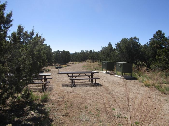 Picnic tables, food lockers, and a grill in a clearing surrounded by juniper. Group campsite 001 in Juniper Family Campground.