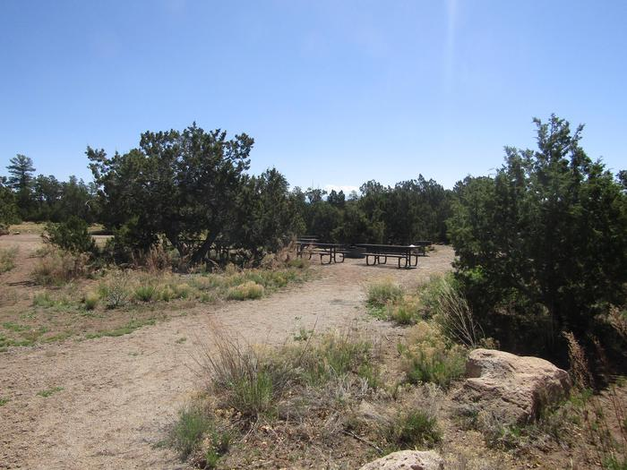 Picnic tables in a clearing surrounded by juniper.Group site 001 includes picnic tables, grills, food lockers, campfire ring, and ample space for multiple tents. Shade is limited.
