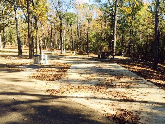 Pull thru sitePat's Bluff Campsite 3