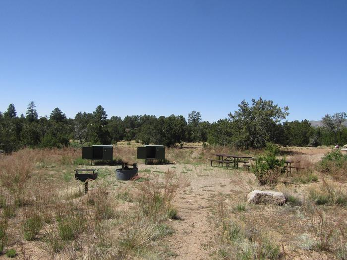 Grill, campfire ring, picnic tables, and food lockers in a clearing with juniper in the background.Group site 005 in Juniper Family Campground.