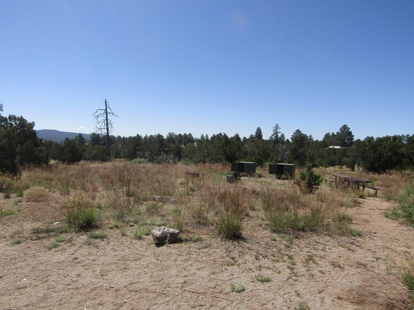 Clearing with picnic tables and food lockers.Food lockers, picnic tables, grills, campfire ring, and ample space for multiple tents are provided in group campsite 005. Restrooms with running water and drinking water are nearby.