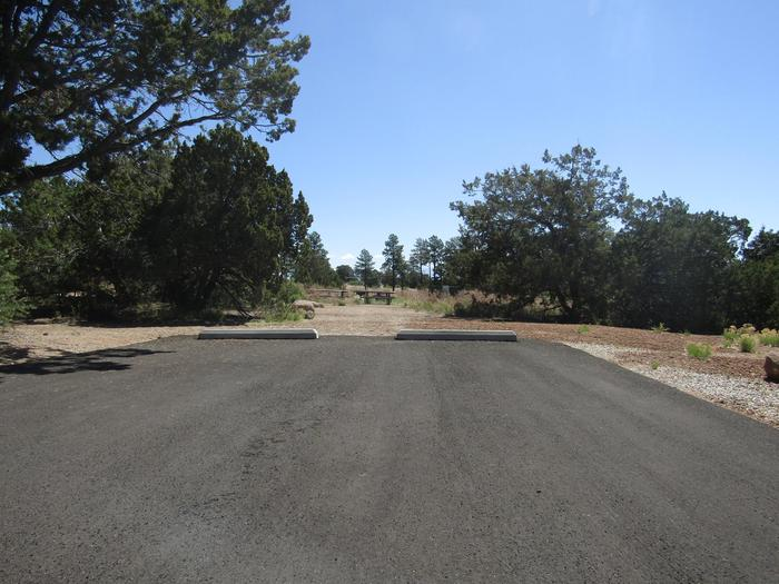 Paved parking area leading to a campsite surrounded by trees.Paved pull-in and pull-through parking is provided for group campsite 005. Only one (1) RV or trailer is permitted per site. Excess vehicles must park in overflow parking lots or at Amphitheater.